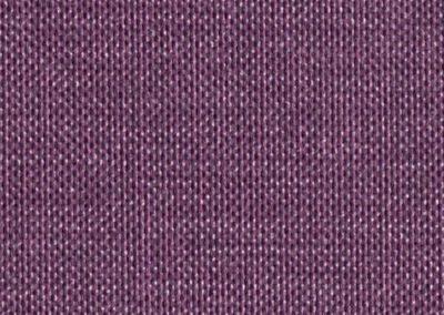 17020_purple