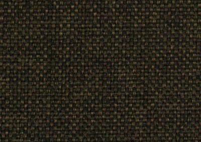 paca-g4v6-d-brown