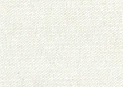 mogani_1_white